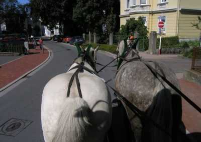 Stadtfest Lüd._2006_185