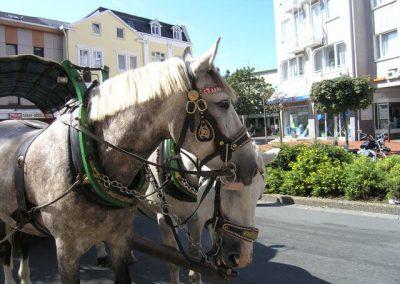 Stadtfest Lüd._2006_187